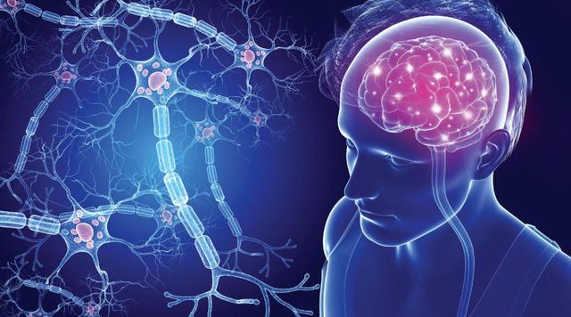 neurone-sclerosi multipla
